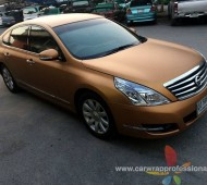 TEANA Full Wrap Copper colors