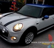 MINI COOPER BLUE ROOF