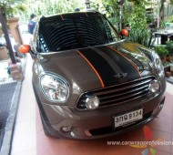 Mini Country Man กับลาย Stripes Viper