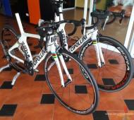 Bike Protection